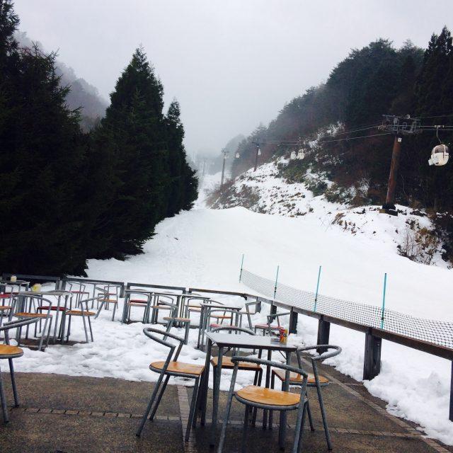 雪やこんこん❄️❄️