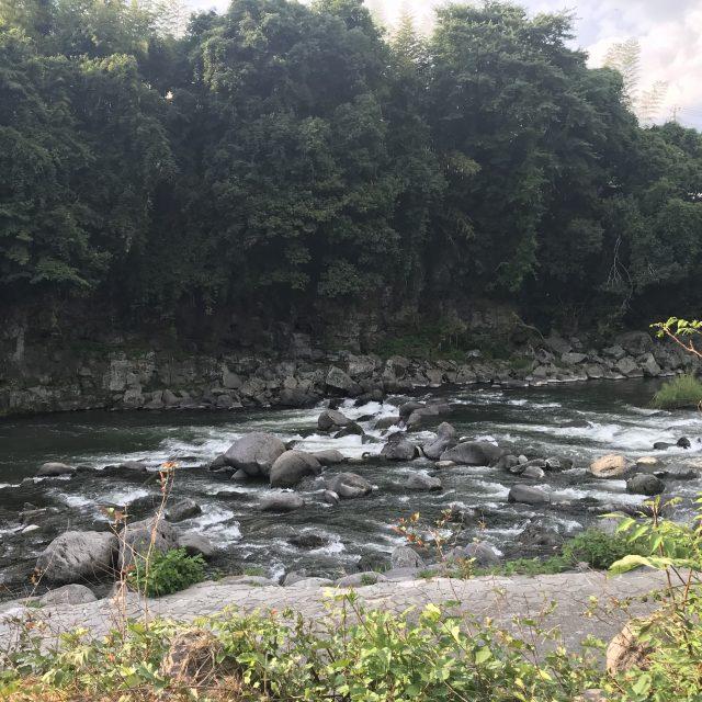 今年初の川!!