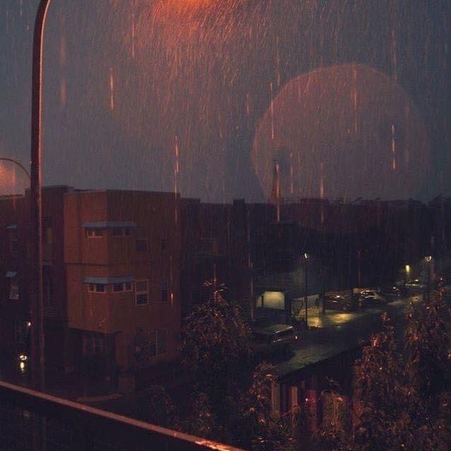 梅雨に入りましたね